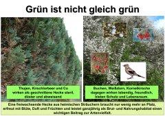 Gartenkultur10_Grn_ist_nicht_gleich_grn_klein.jpg