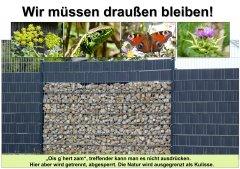 Gartenkultur12_Wir_mssen_drauen_bleiben_klein.jpg